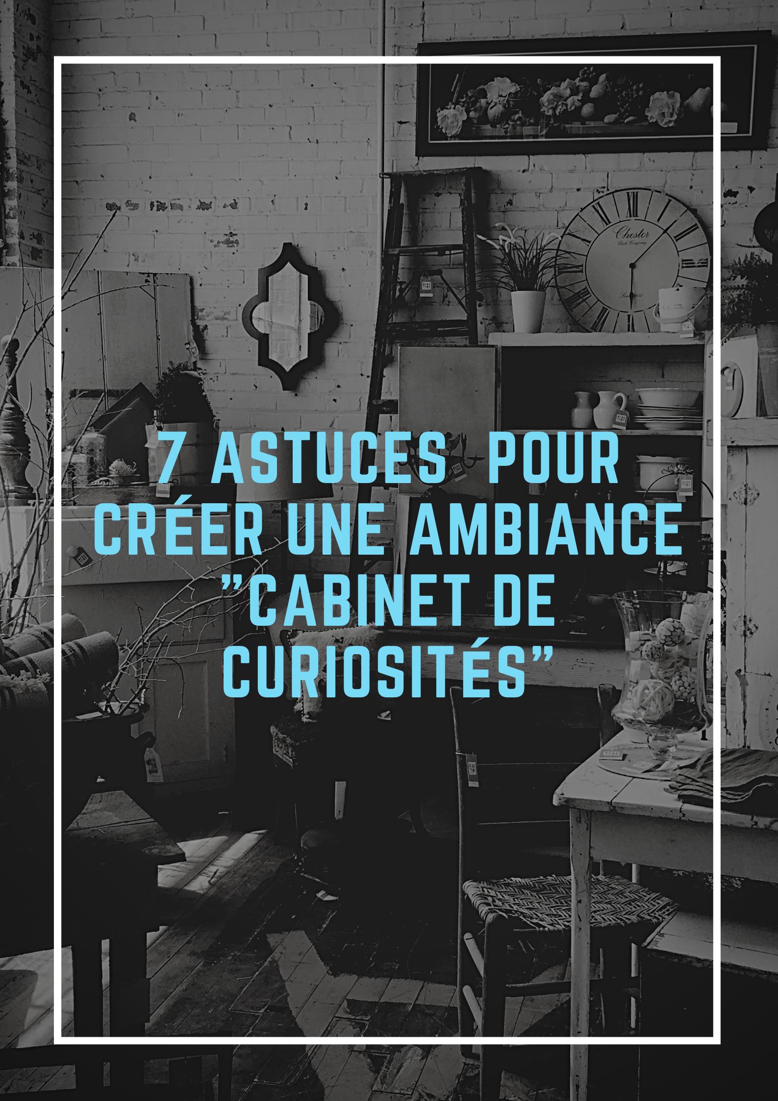 7-astuces-pour-creer-une-ambiance-cabinet-de-curiosites